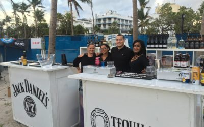 Hire a bartender in Naples for parties.